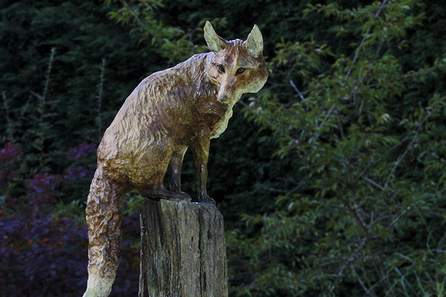 Wily Old Fox on Post